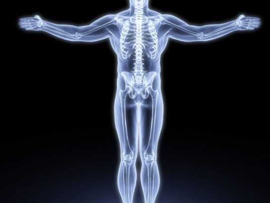 human body by X-rays. 3d render